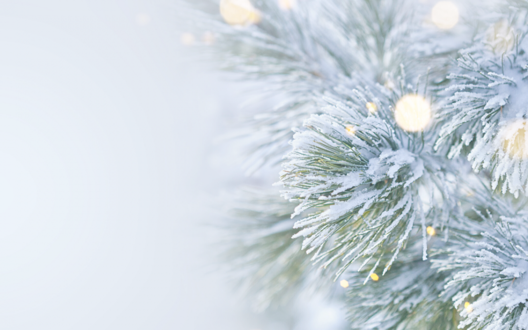 Strategies for navigating holiday grief