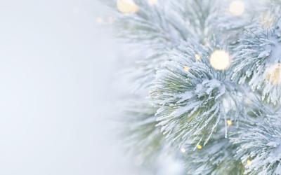 Navigating Holiday Grief Practical Strategies